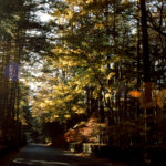 〔募集中〕「秋・グランフォンド軽井沢」今年は10月5日・6日の二日間で開催。